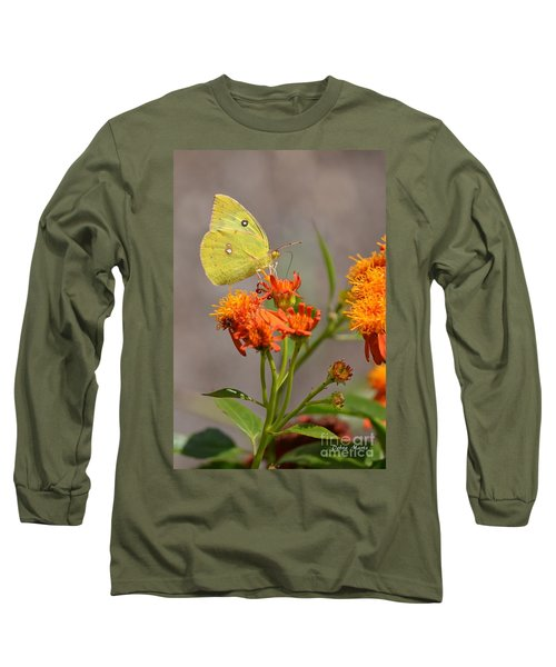 Long Sleeve T-Shirt featuring the photograph Yellow Sulphur Butterfly by Debra Martz