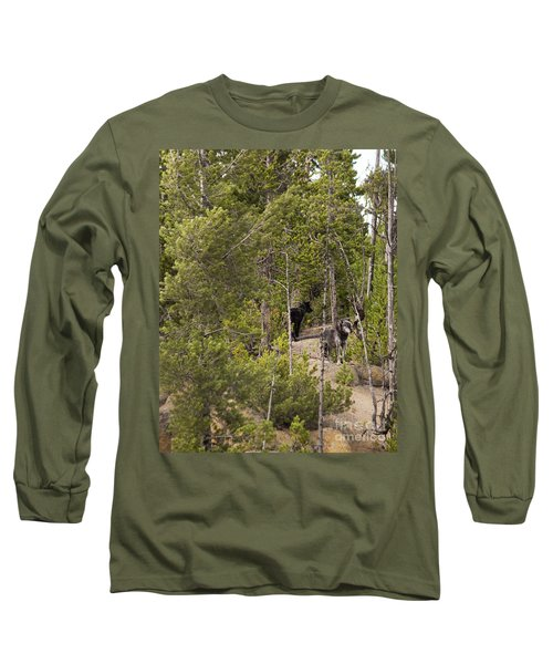 Long Sleeve T-Shirt featuring the photograph Yellowstone Wolves by Belinda Greb