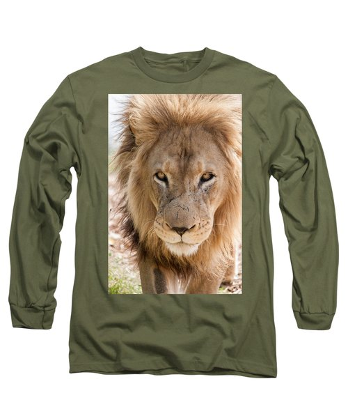 You Look Like Lunch Long Sleeve T-Shirt by Ray Warren