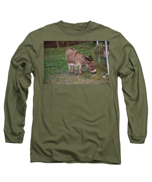 Young Donkey Eating Long Sleeve T-Shirt by Chris Flees