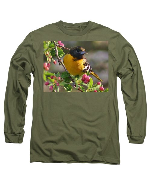 Young Male Oriole Long Sleeve T-Shirt by Bruce Bley