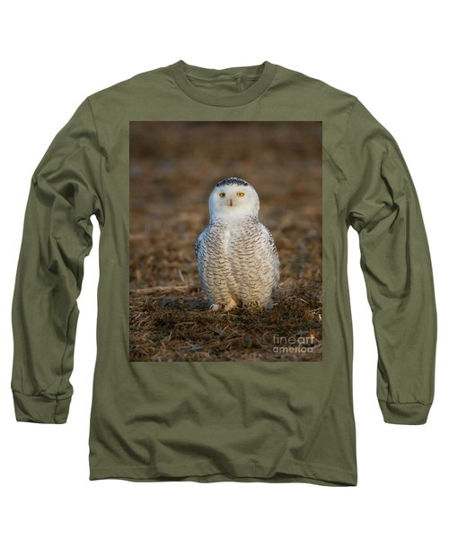 Young Snowy Owl Long Sleeve T-Shirt