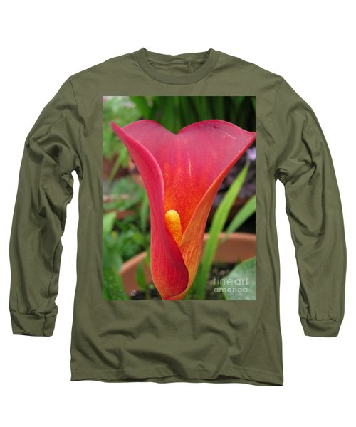Zantedeschia Named Red Sox Long Sleeve T-Shirt by J McCombie