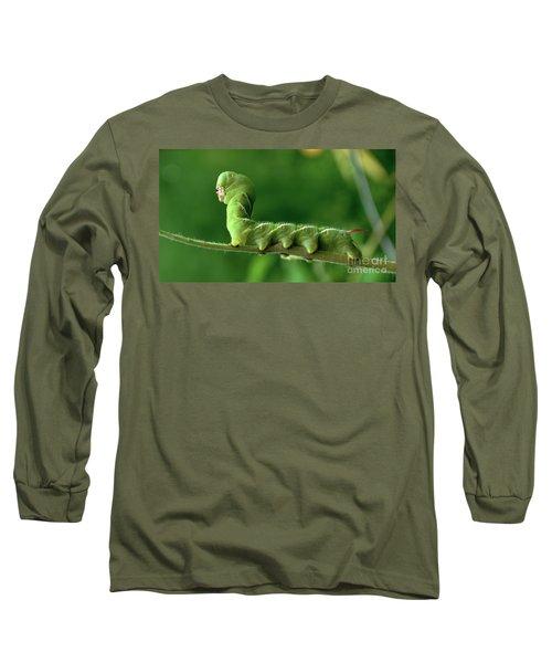 Munch A Bunch Long Sleeve T-Shirt by Sue Stefanowicz