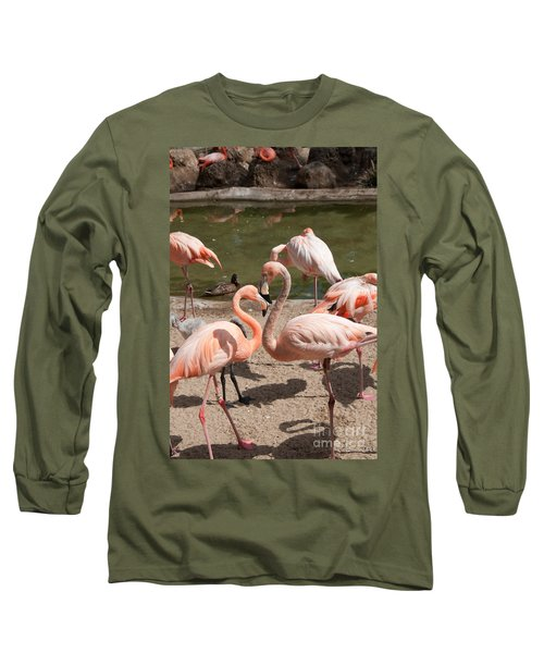 Flamingos Long Sleeve T-Shirt