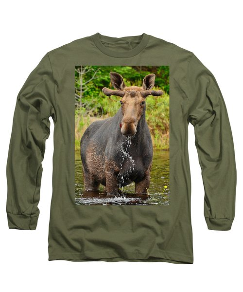 Algonquin Bull Long Sleeve T-Shirt