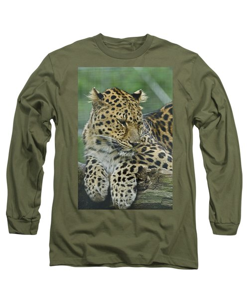 Long Sleeve T-Shirt featuring the photograph Amur Leopard by JT Lewis