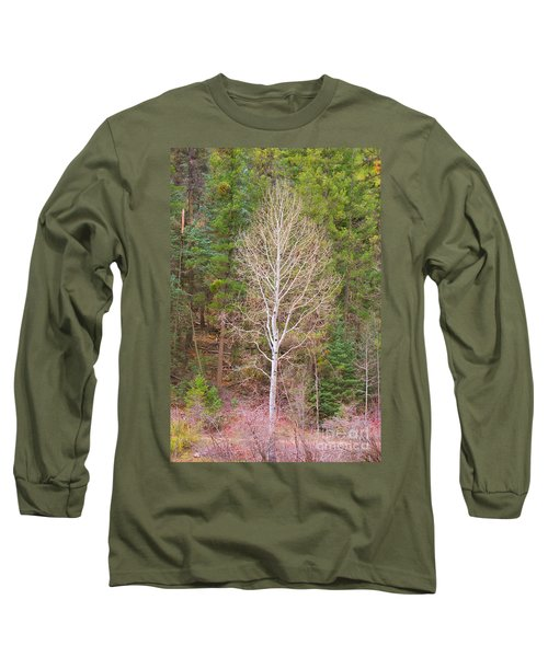 Aspen Tree Forest Road 249 Long Sleeve T-Shirt
