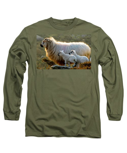 Baby-lambs Long Sleeve T-Shirt by Barbara Walsh