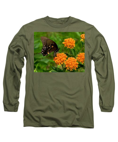 Black Swallowtail Visiting Butterfly Weed Din012 Long Sleeve T-Shirt