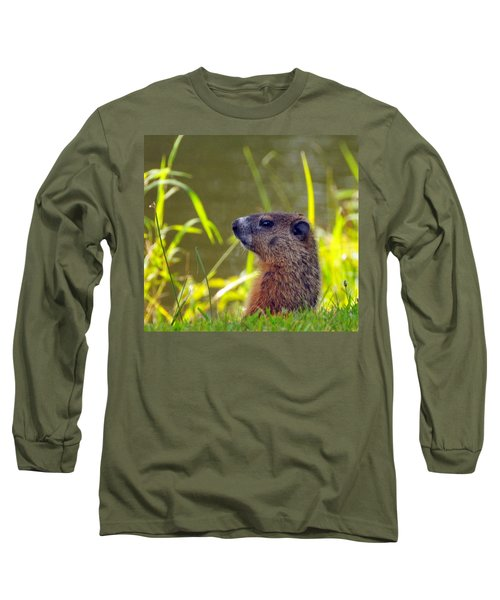 Chucky Woodchuck Long Sleeve T-Shirt by Paul Ward