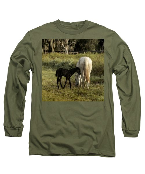 Cracker Foal And Mare Long Sleeve T-Shirt by Lynn Palmer