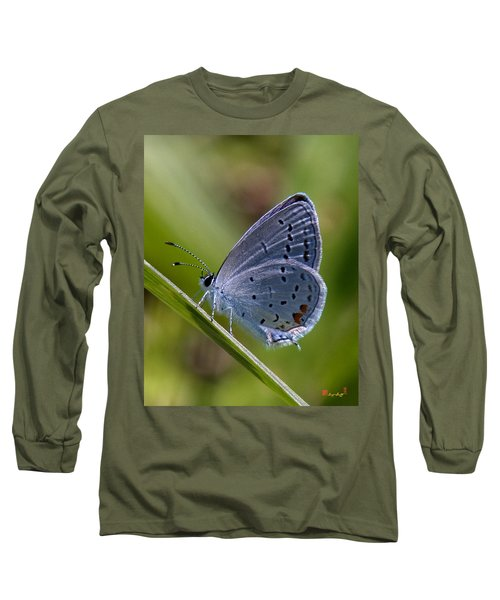 Eastern Tailed-blue Butterfly Din045 Long Sleeve T-Shirt