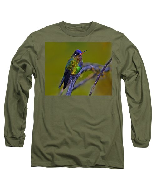 Fiery-throated Hummingbird Long Sleeve T-Shirt