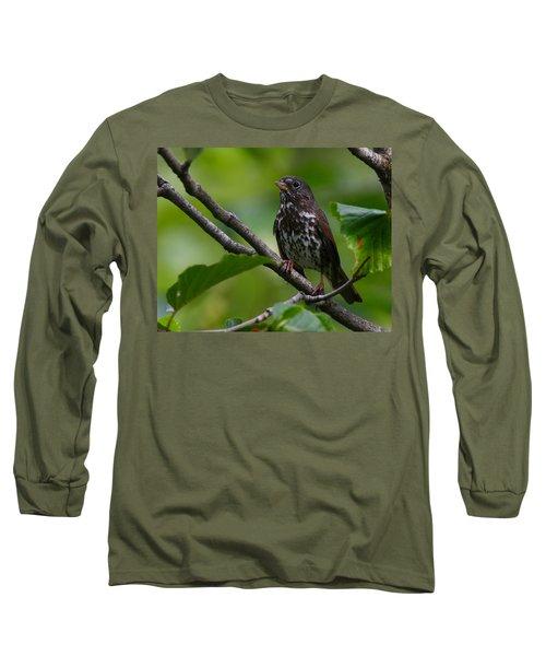 Fox Sparrow Long Sleeve T-Shirt by Doug Lloyd