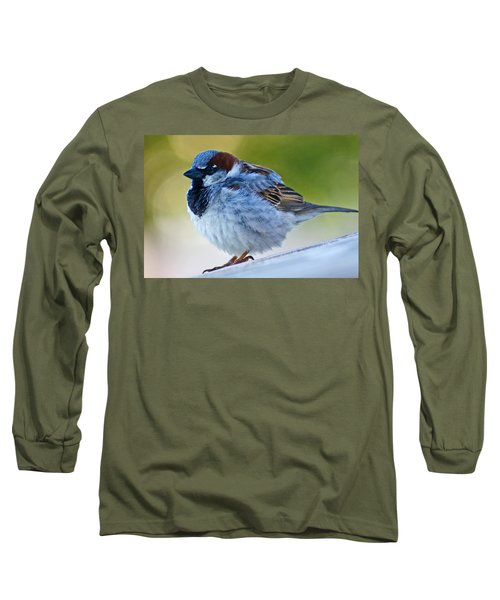 Long Sleeve T-Shirt featuring the photograph Guard Bird by Colleen Coccia