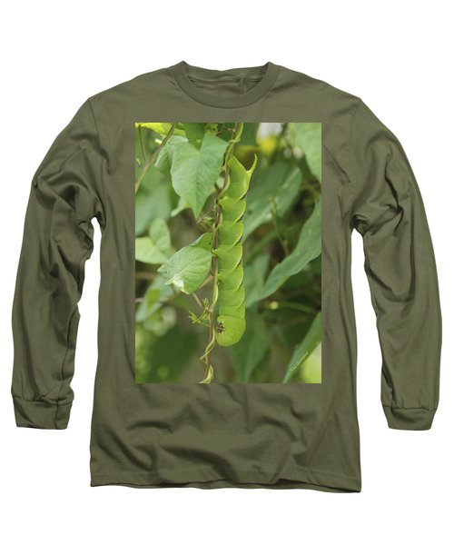 Long Sleeve T-Shirt featuring the photograph Hangin' Around by Kay Lovingood