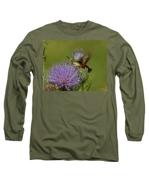 Hummingbird Or Clearwing Moth Din178 Long Sleeve T-Shirt