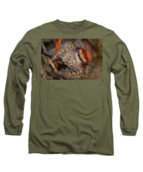 Jumping Spider Portrait Long Sleeve T-Shirt by Daniel Reed