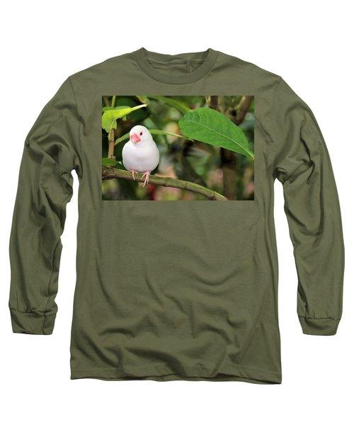 Little White Bird Long Sleeve T-Shirt by Rosalie Scanlon