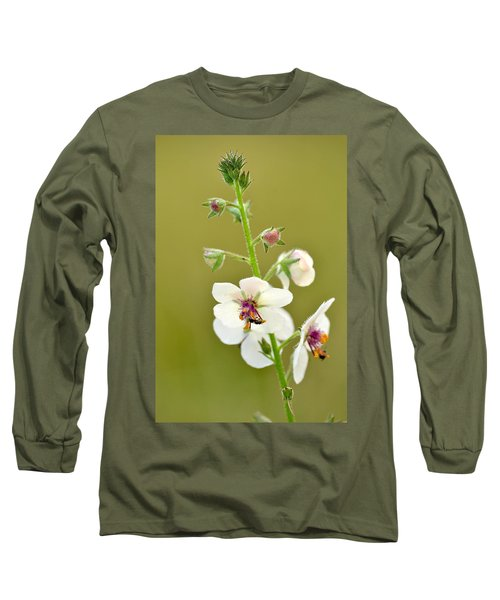Long Sleeve T-Shirt featuring the photograph Moth Mullein by JD Grimes