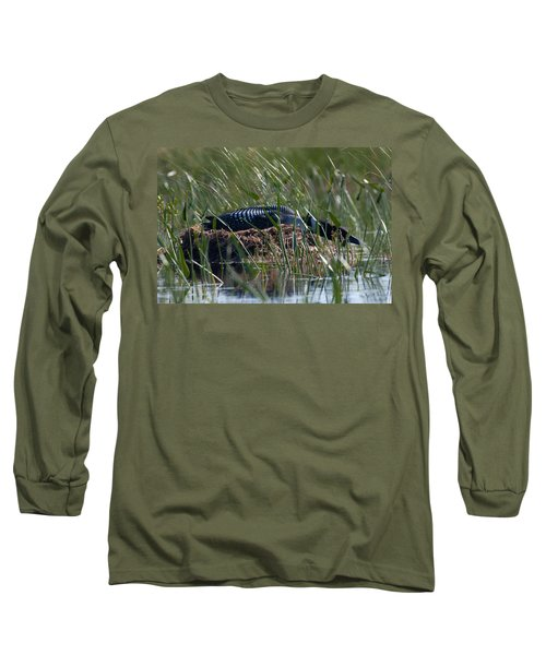 Nesting Loon Long Sleeve T-Shirt by Brent L Ander