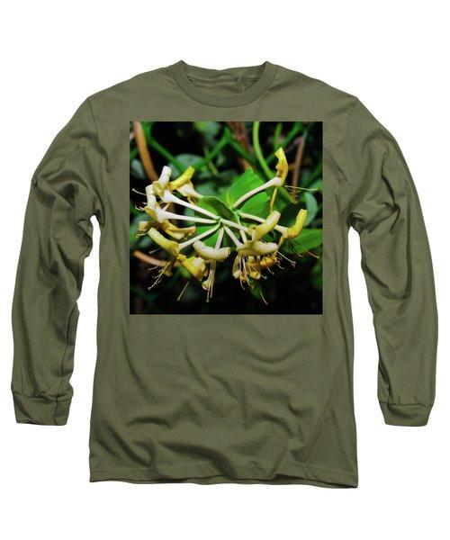Overblown Perfoliate Long Sleeve T-Shirt