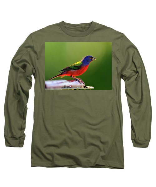 Painting Color Long Sleeve T-Shirt