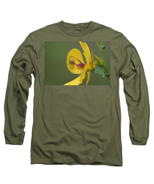 Partridge Pea And Matching Crab Spider With Prey Long Sleeve T-Shirt