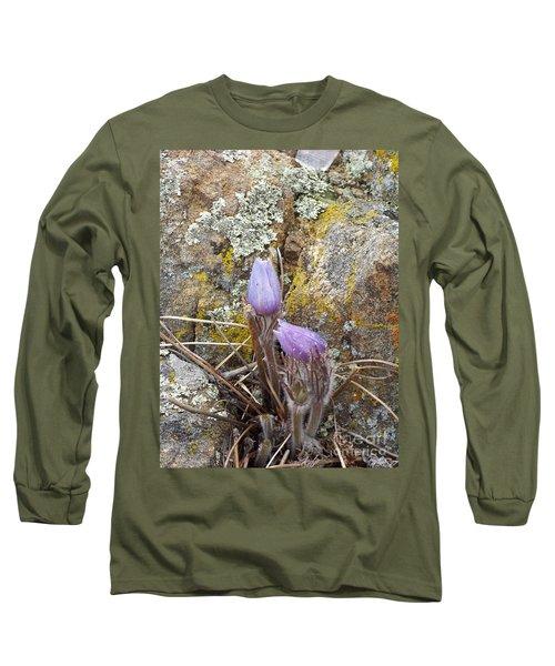 Pasque Flowers Long Sleeve T-Shirt