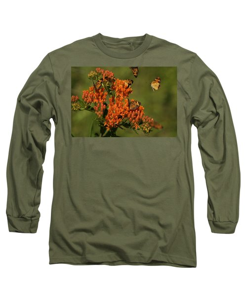 Pearly Crescentpot Butterflies Landing On Butterfly Milkweed Long Sleeve T-Shirt by Daniel Reed