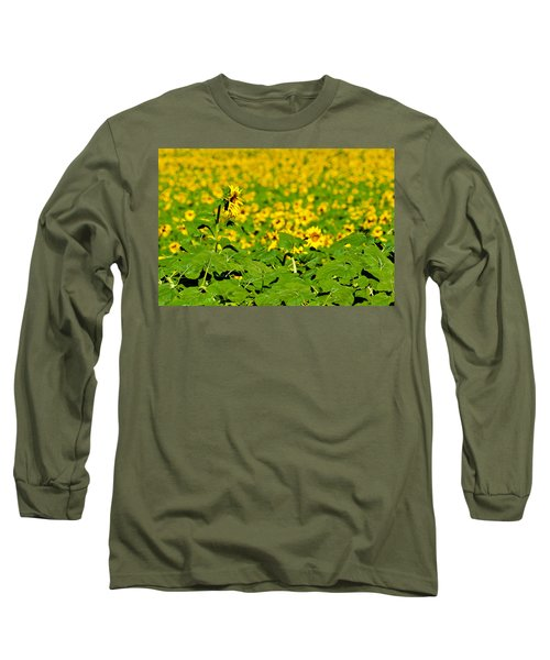 Long Sleeve T-Shirt featuring the photograph Peeking Above  Sea Of Yellow by Colleen Coccia