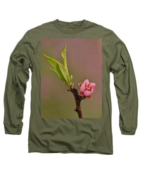 Petite Peach Long Sleeve T-Shirt by JD Grimes