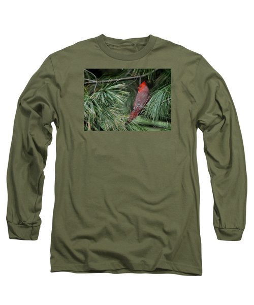 Long Sleeve T-Shirt featuring the photograph Red Cardinal In Green Pine by Nava Thompson