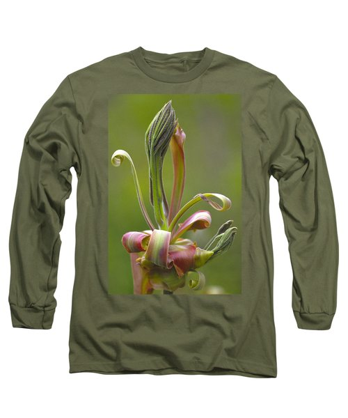 Shagbark Hickory Leaf And Flower Bud Long Sleeve T-Shirt
