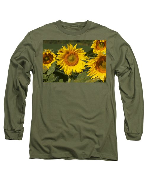 Long Sleeve T-Shirt featuring the photograph Sun Flower by William Norton