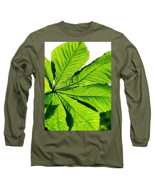 Long Sleeve T-Shirt featuring the photograph Sun On A Horse Chestnut Leaf by Steve Taylor