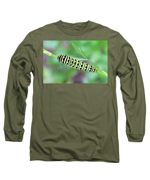 Swallowtail Caterpillar On Parsley Long Sleeve T-Shirt