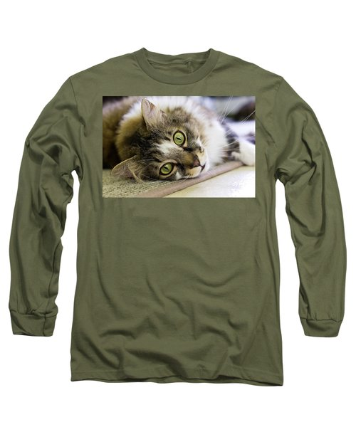 Tabby Cat Looking At Camera Long Sleeve T-Shirt