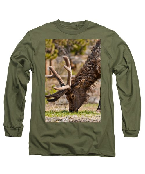 Long Sleeve T-Shirt featuring the photograph Young One by Colleen Coccia