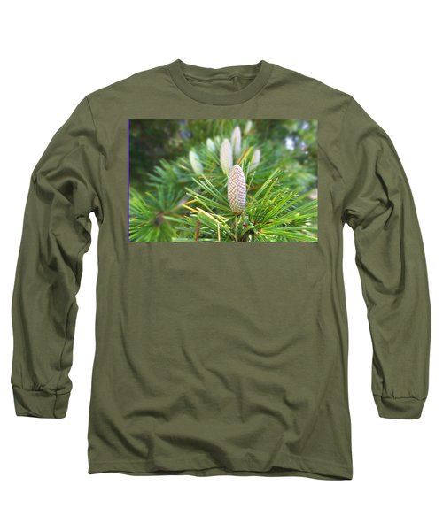 Young Pine Cones Long Sleeve T-Shirt by Anne Mott