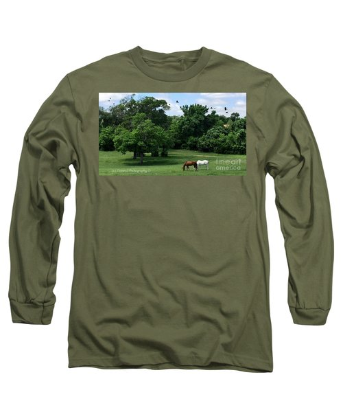 Mr. And Mrs. Horse - No. 195 Long Sleeve T-Shirt