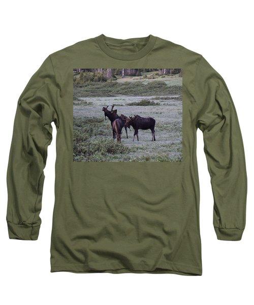 Moose Cameron Pass Co Long Sleeve T-Shirt