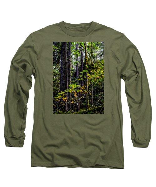 All Lit Up Long Sleeve T-Shirt by Ronda Broatch