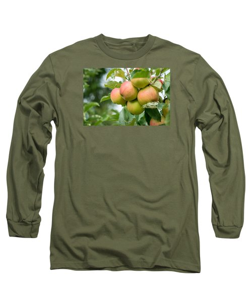 Apple Harvest Long Sleeve T-Shirt