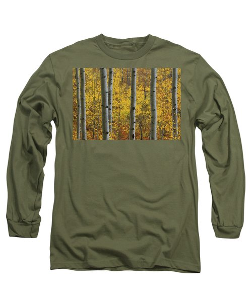 Aspen In Autumn At Mcclure Pass Long Sleeve T-Shirt by Jetson Nguyen