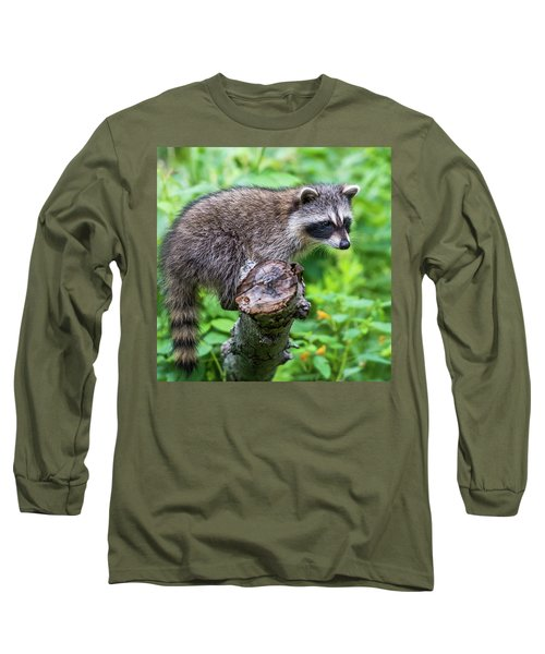 Long Sleeve T-Shirt featuring the photograph Baby Racoon by Paul Freidlund