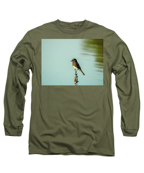 Black Phoebe Long Sleeve T-Shirt