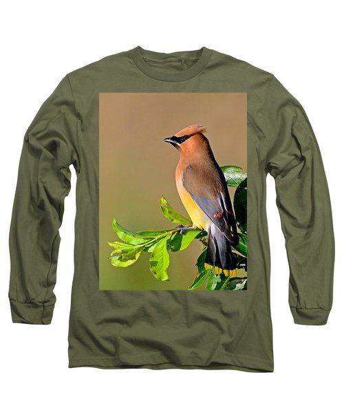 Cedar Waxwing Long Sleeve T-Shirt by Rodney Campbell
