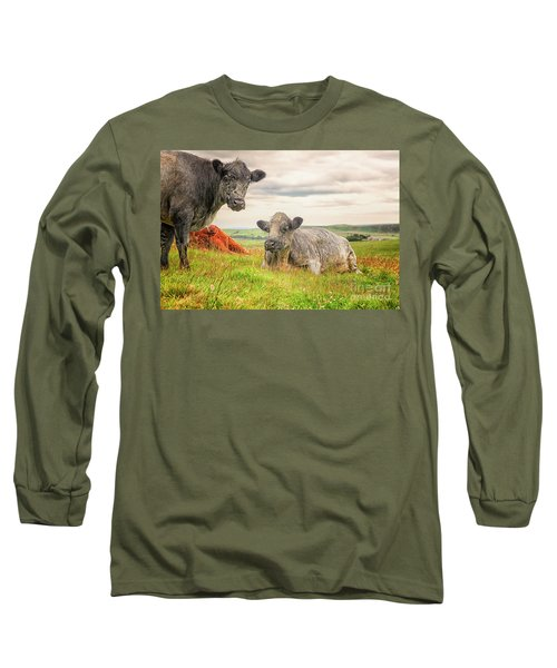 Colorful Highland Cattle Long Sleeve T-Shirt